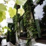 mielzynski_wines_spirits_specialities_1